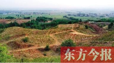 """从""""卖石头""""到""""卖风景""""  首山两届油菜花节引资近90亿"""